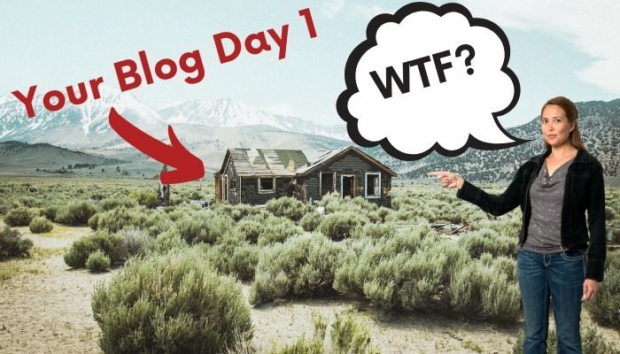 A person surprised by what their blog looks like after 1 day.