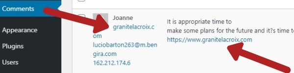 example spam comment for wordpress.